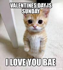 I Love You Bae Meme - meme creator valentines day is sunday i love you bae meme
