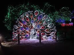 denver zoo lights hours denver zoo lights december 30 2013