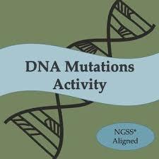 best 25 genetic variation ideas on pinterest punnett square