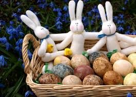 recipe naturally dyed easter eggs u2013 real food forager
