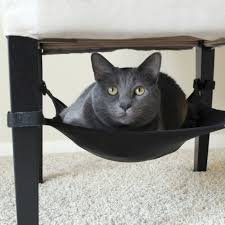Trixie Cat Hammock by Find The Best Cat Hammock Cat Hammock Comparison Guide Find