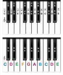 piano diagram dolgular com
