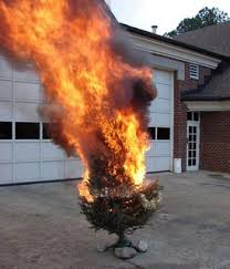 thanksgiving turkey explosion 7 home garden do it yourself