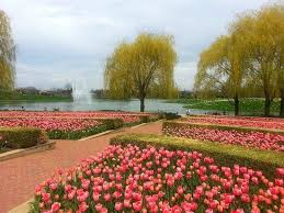 Botanic Garden Glencoe Tulip Garden Picture Of Chicago Botanic Garden Glencoe