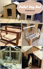 Let Your Dog Occupy The Patio ly If It Is Well Trained And