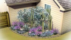 desert gardening corner garden bed