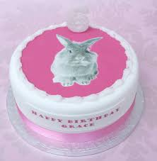 cute rabbit birthday cake image inspiration of cake and birthday
