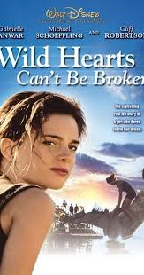 The Movie Blind Wild Hearts Can U0027t Be Broken 1991 Imdb
