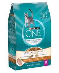dry cat food purina