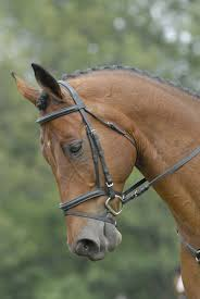 Horse Design Home Decor Horse Head Mask Idolza