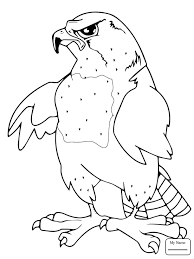 falcon mascot birds coloring pages kids colorpages7