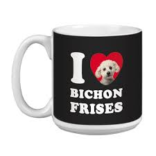 bichon frise virginia admin author at all about bichon frise dogs page 16 of 21