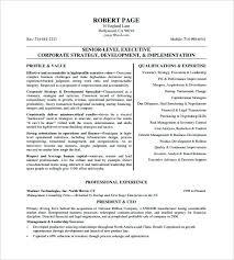 sample resume of ceo resume examples sample bio sample resume