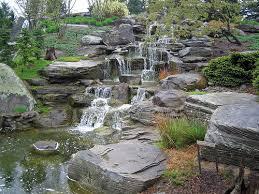 Container Water Garden Ideas Water Garden Ideas