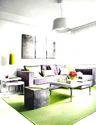 Decorating Ideas For Apartment Living Rooms Happy Living Room Ideas Small Apartment Top Design Best Home