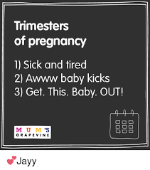 Baby Kicking Meme - trimesters of pregnancy 1 sick and tired 2 awww baby kicks 3 get