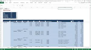 transaction sales reports using excelreportlink sales pivot