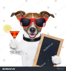 man holding martini funny cocktail dog holding martini glass stock photo 140347894