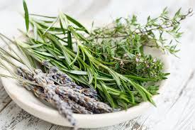 herbes cuisine สม นไพร ฝร งเศส ช อดอกไม ภาพฟร บน pixabay