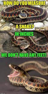 Meme Puns - snake puns meme generator imgflip