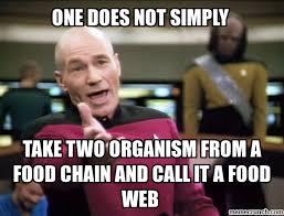 Web Memes - science food web