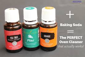 Tea Tree Oil Bathroom Cleaner 6 Best Essential Oil Spring Cleaning Recipes Recipes With