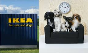 ikea dogs ikea is now selling a lot of cool furniture for dogs and cats vix