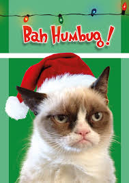 Grumpy Cat Memes Christmas - the instant cat meme grumpy cat mental floss