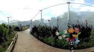 Garden Art International 360 Vr Tour Of The Butterfly Garden At The Epcot
