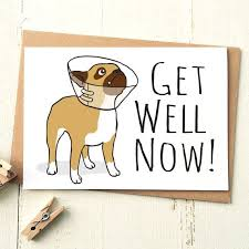 the 25 best funny get well cards ideas on pinterest get well