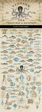the 25 best sea creatures drawing ideas on pinterest sea