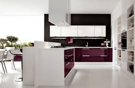 High Gloss Laminate Floor Kitchen Modern Purple Kitchen Furniture Cabinet Sets New Purple