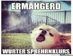 Dog Lady Meme - lady s and gentlemen i present you ermahgerd dog by gigimasterxx