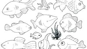 coloring pages about fish ocean free coloring pages ocean fish coloring pages fish color ocean