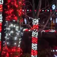 christmas lights on tree trunk cheminee website
