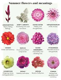 wedding flowers meaning encouraging each flower meaning related keywords suggestions each