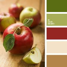 414 best great color combinations images on pinterest colors
