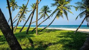Cottages In Pondicherry Near The Beach by Puducherry U0027s Best Secrets Places To Visit Things To Do