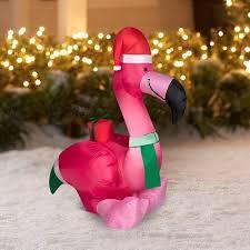 23 best flamingo images on pink flamingos