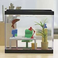 Fish Tank Desk by Office Fish Tank Big Fish Small Pond
