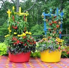 Garden Club Ideas Garden Container Ideas You Can Brighten Up Your Container
