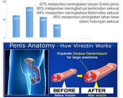 obat pembesar penis vimax suporte