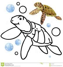 coloring book coral reef fauna cartoon fish illustration for kid