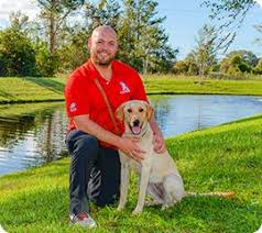 How To Get A Comfort Dog K9s For Warriors