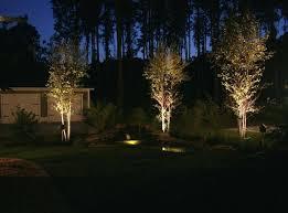 Tree Lights Landscape Landscape Uplights Brilliant Led Best Images About Lighting On