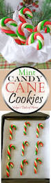 best 25 candy cane cookies ideas on pinterest christmas baking