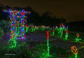 fantasy of lights promo code winter walk of lights nova parks