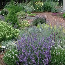 starting a herb garden sweet valley herbs
