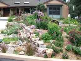 Backyard Xeriscape Ideas Decoration Xeriscape Design Ideas Landscaping For Front Yard
