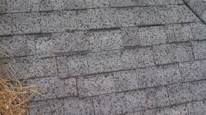 Tamko Thunderstorm Grey Shingles by 9150 Shoal Creek Dr Stubbs Roofing Tallahassee